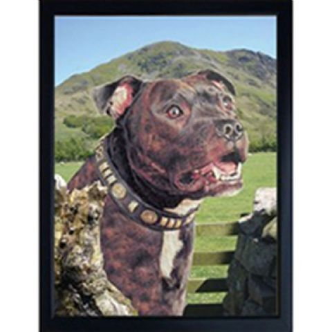STAFFORDSHIRE BULL TERRIER BRINDLE 3D FRIDGE MAGNET
